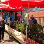 Happy plant buyers!